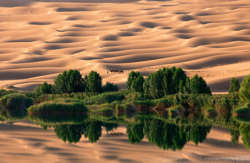 Oasis. (Photo and caption by Nam In Geun) National Geographic