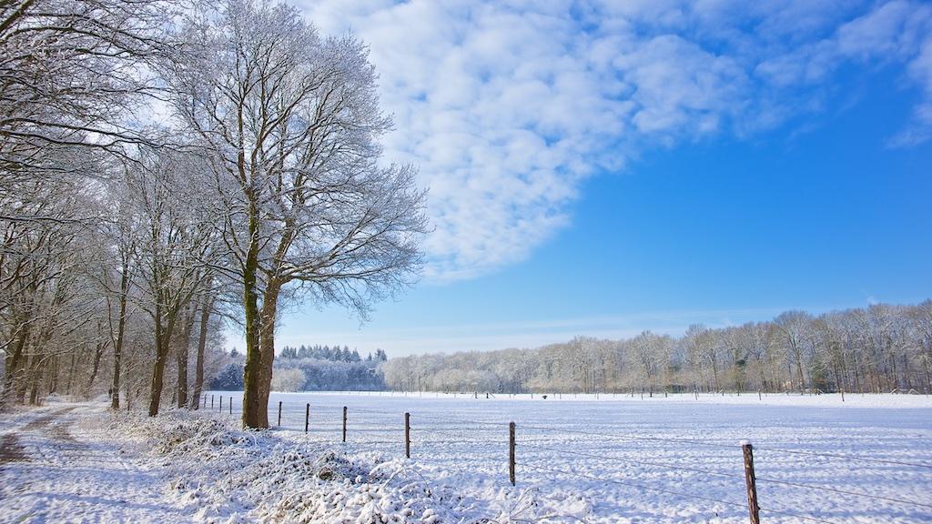 winterlandschappen fotoschool keistad ©gofoto