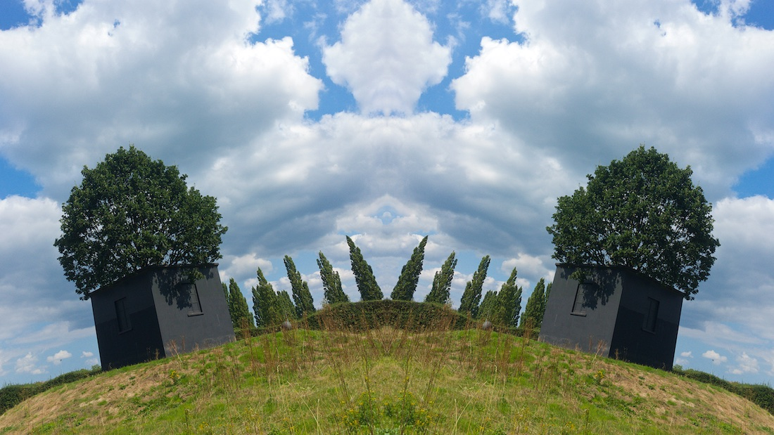 Fotograferen met je smartphone Fotoschool Keistad Twee bomen